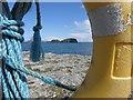 D0445 : Sheep Island through the lifebelt : Week 34