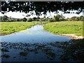 SU9199 : River Misbourne Little Missenden by michael