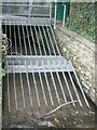 SX4660 : Tamerton Foliot Stream Culvert by timothy luckham