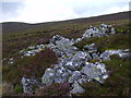 NN8586 : Rock outcrop on Carn an Fhidleir Lorgaidh's south ridge near Glen Feshie by Aviemore by ian shiell