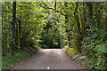 TQ4965 : Gorse Road by Ian Capper