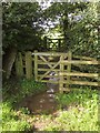 SY2496 : Gates and flood, Shute Footpath 18 by Derek Harper