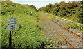 C9341 : Railway, Bushmills by Albert Bridge