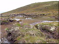 NH2629 : Peaty pool in mini bealach east of Carn Loch na Gobhlaig above Glen Affric by ian shiell
