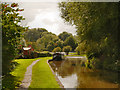 SJ6374 : Trent and Mersey Canal by David Dixon