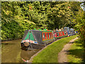 SJ6374 : Narrowboats, Trent and Mersey Canal by David Dixon