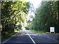 SU8307 : B2178 near Oakwood Park by Colin Pyle