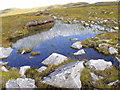 NH2730 : Reedy pool on bealach east of An Cam-allt above Glen Affric by ian shiell