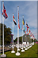 TQ4277 : Flags, London 2012 shooting venue  by Ian Capper