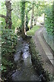 SK3369 : Stream at Chandler Hill Lane, near Holymoorside by J.Hannan-Briggs
