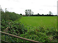 SU1098 : Football field on the edge of Down Ampney by Nick Smith