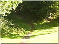 NS7655 : Stairway towards Shields Glen by Ross Watson