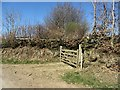 SS8838 : Gate off Thorne Lane by Richard Webb
