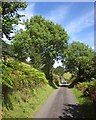 SH8105 : Byway to Pen-y-Coed by Derek Harper
