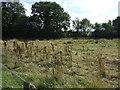 TL0863 : Grazing land, The Grange by JThomas
