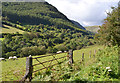 SN9570 : Gate in the Wye valley by Nigel Brown