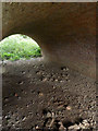 SK7855 : Underneath the arches  by Alan Murray-Rust
