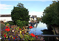 TL3514 : River Lea in Ware by Des Blenkinsopp