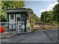 SJ9385 : Norbury Hollow Crossing by David Dixon