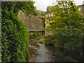 SJ9985 : River Goyt, Torr Vale Mill by David Dixon