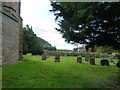 ST5959 : St Nicholas and St Mary, Stowey: churchyard (III) by Basher Eyre