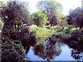 TQ1703 : Stream in Brooklands Park by Paul Gillett
