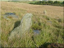 SD9922 : Standing stones by Humphrey Bolton