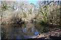 SX1064 : Station Pond on the edge of Dreasonmoor Wood by Mike May