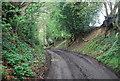 TQ0318 : Wey South Path heading north by N Chadwick