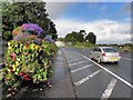 H4572 : Floral display along the A5, Omagh by Kenneth  Allen