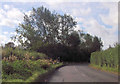 SP7618 : Blackgrove Road at start of footpath by John Firth