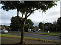 TQ4762 : Roundabout on Sevenoaks Road, Pratt's Bottom by David Howard