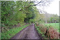 TQ0321 : Wey South Path by N Chadwick