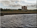 SJ8196 : Manchester Ship Canal, Pomona Dock 1 by David Dixon