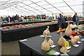 SO7842 : National Vegetable Society display, the Autumn Show by Bob Embleton