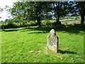 SY6399 : Sydling St Nicholas: churchyard (j) by Basher Eyre
