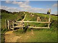 SY4590 : Gate on the coast path, West Cliff by Derek Harper