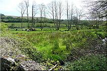 SX7276 : East Webburn River by Graham Horn