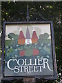 TQ7146 : Collier Street Village sign (close-up) by David Anstiss