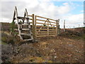 NJ0946 : A Substantial Gate South of Loch Dallas by Alan Hodgson