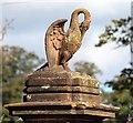 SO8442 : Pelican atop the Severn End gatepost : Week 41 winner
