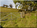 SK0292 : Gate and Stile by David Dixon