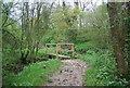 TQ0424 : Footbridge, Wey South Path by N Chadwick