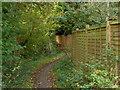 TQ0281 : Beeches Way by Alan Hunt