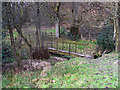 SJ9360 : Footbridge in the woods by Row17