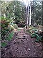 SP9129 : Path toward Vane by Philip Jeffrey