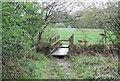 TQ0625 : Footbridge, Wey South Path by N Chadwick