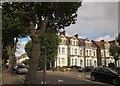 TQ2484 : Buckley Road, NW6 by Derek Harper