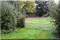 SP8227 : Path to Ashdean Farm by Philip Jeffrey
