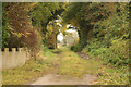 SK7179 : Leafy lane by Richard Croft